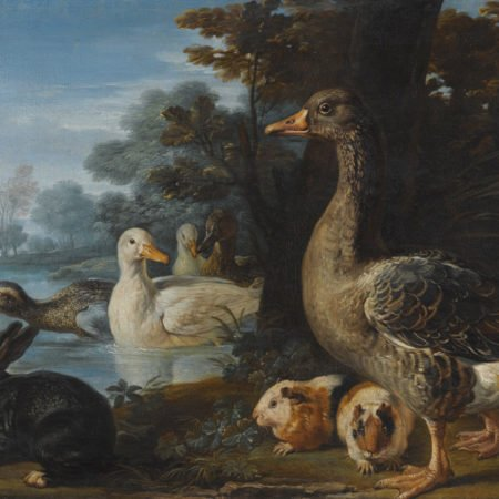 Ducks, Guinea Pigs and a Rabbit in a Wooded Landscape , David de Coninck